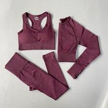 Conjunto de Yoga sin costuras para mujer, ropa deportiva de entrenamiento, gimnasio, Top corto de manga larga, Leggings de cintura alta, trajes deportivos, 2/3 Uds.