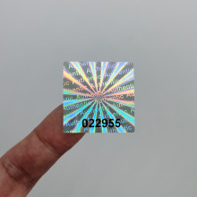 One-Time Laser Warranty Sticker, Sealed Tamper-Proof Holographic Label, Black Serial Number, Customized Logo, 500pcs 30mmx30mm
