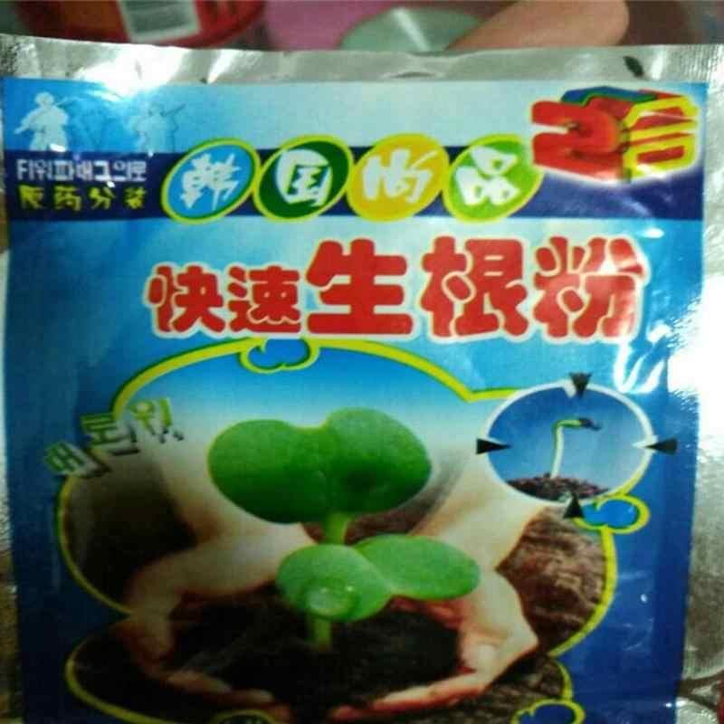 10 Uds. Planta de Bonsai de crecimiento rápido de raíz reguladores de la hormona medicinal crecimiento recuperación de plántulas germinación vigor ayuda fertilizante