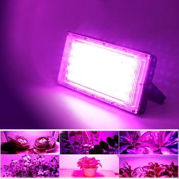 Led Flood Light 220V Full Spectrum LED Plant Growth Lamp 50W Led Grow Light Greenhouse Hydroponic Plant Floodlight Spotlight