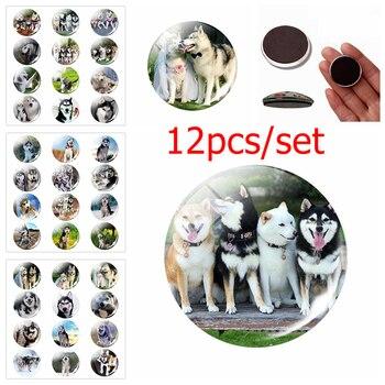 12pcs Siberian Husky Fridge Magnet set Cute Dog Jewelry Message Board Sticker Glass Dome Dog Couple Animal Lovers Gift HomeDecor