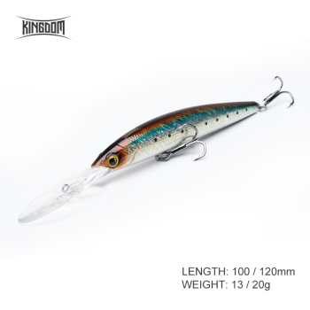 Kingdom New Jerkbaits 100DR Fishing lures 100mm 120mm Suspending Minnow wobblers Depth 6-10ft long -casting Bass Pike Hard Baits