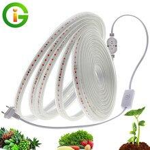LEVOU Crescer Tira AC220V Cresce A Luz LED Espectro Completo À Prova D' Água 2835 LED Phyto lâmpadas Para Plantas Flores Hidropônico de Estufas