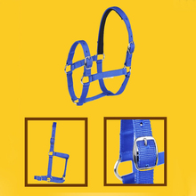 Training-Rope Horse-Head Riding HALTER Collar Racing-Equipment Adjustable Safety Thickened