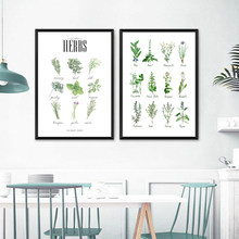 Culinary Herbs Prints Vegetable Botanical Poster Kitchen Decor , Spices Herbs Guide Wall Art Pictures Canvas Painting Decoration