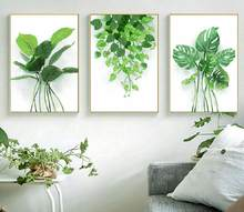 Decorative Painting Green Planting Cuadros Decoracion Dormitorio Wall Canvas Art Kitchen Posters Monstera Deliciosa Frameless(China)