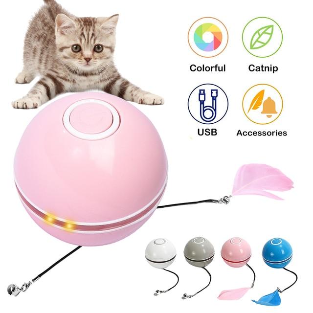 Fluorescent Butterfly Kitten Toys Non Stop Fun!  2