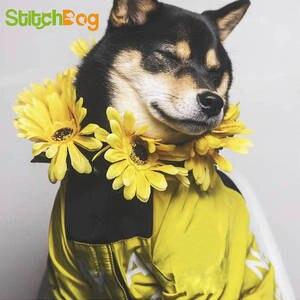 Dog Jacket Dog-Winter Fashion Medium Reflective Large Windproof for Labrador Dogs-Clothes