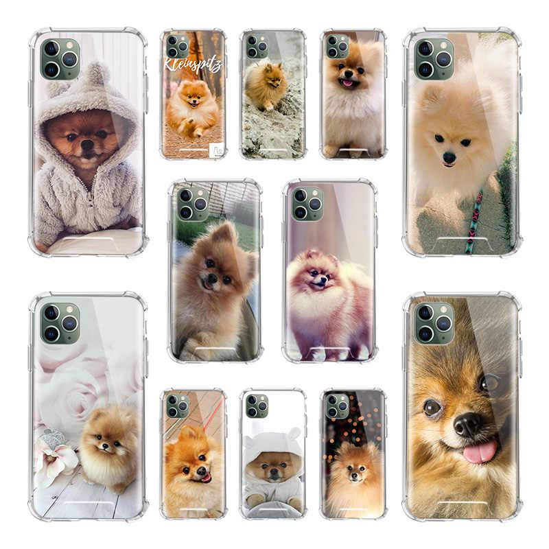 Nette Pommerschen Hunde Hund Fall Für Apple iPhone 11 Pro Max XS X XR SE 2020 8 7 6 6S Plus Airbag Anti Herbst TPU Telefon Abdeckungen