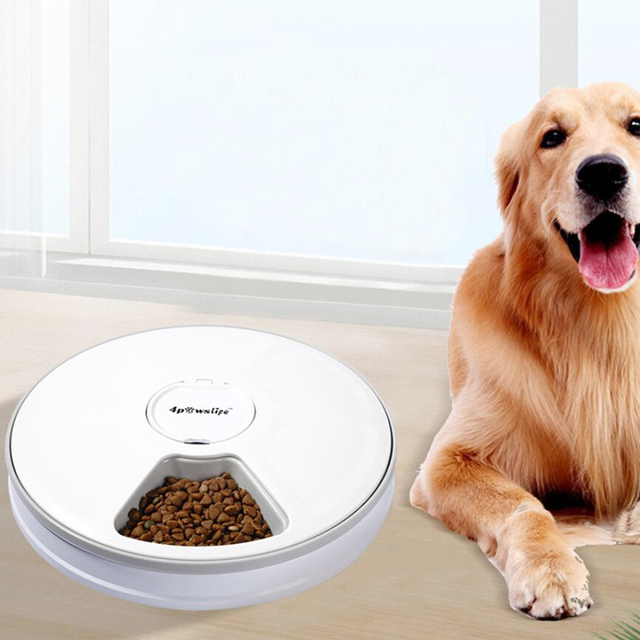 Automatic Feeder With Voice Record Stainless Steel Food Bowl - LCD Screen Timer Food Dispenser 6