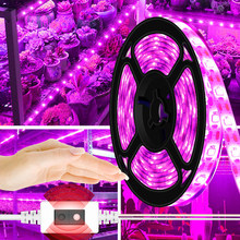 USB luzes de Planta 5V LEVOU Crescer Luz de Tira 2835 m 2 1m 3m varredura Mão LED Fita lâmpada para Estufa Hidropônica Crescimento Das Mudas Fito