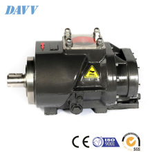 DMC Screw Air End Pump Davey Rotary Type Baosi BSL Series YNE133RA