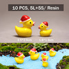 ducks 10pcs
