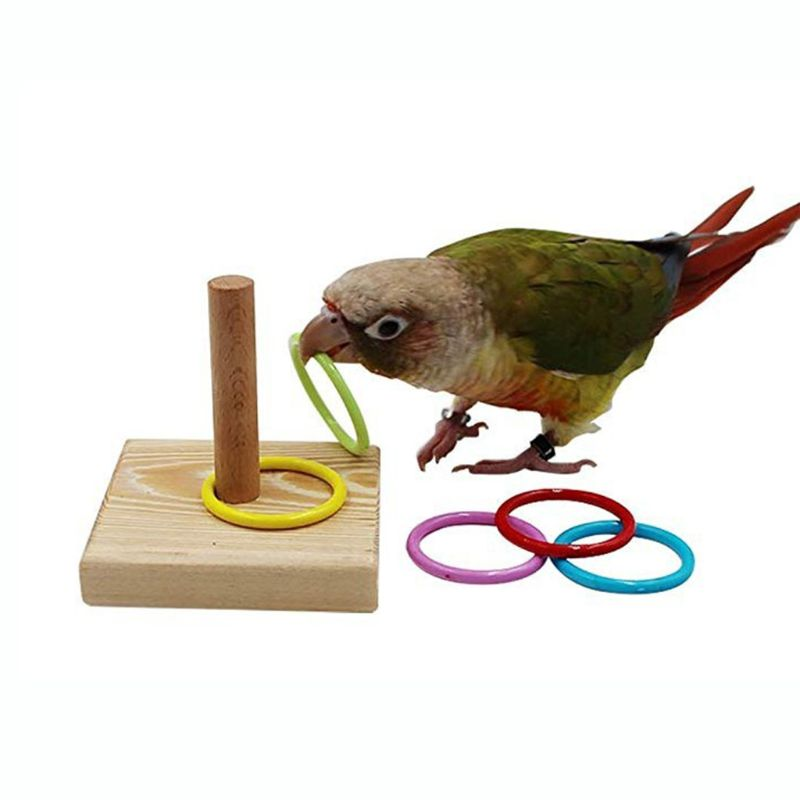 Wooden Bird Parrot Platform Plastic Ring Intelligence Training Chew Toy Bird Toy Supplies Pet Develop Intelligence