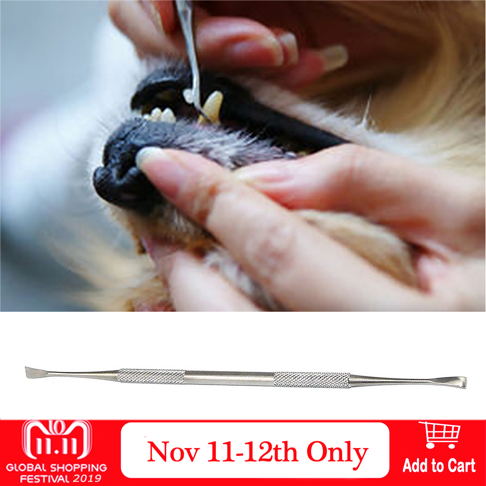 Double-head Stainless Steel Pet Tartar Stone Remover Scraper Scaler For Dog Cat Dental Tooth Oral Hygiene Health Care Tools