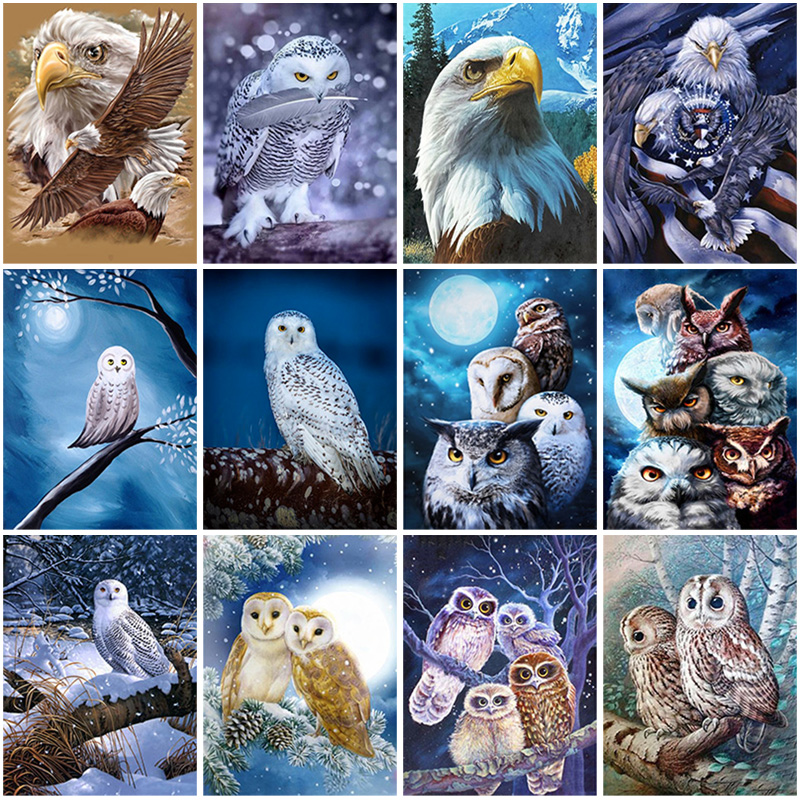 Eagle DIY 5D Diamond Painting Animals Owl Full Round Drill Rhinestone Cross Stitch Diamond Embroidery Mosaic Wall Art Gift