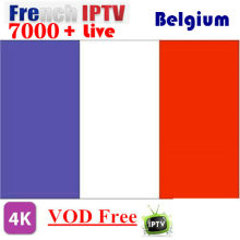 6/12Month French IPTV Arabic IPTV Dutch IPTV Android app m3u premium server abonnement(China)