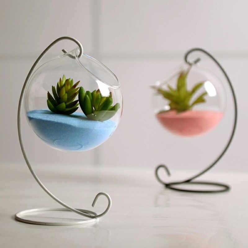 Домашняя садовая прозрачная стеклянная Цветочная ваза-Террариум контейнер шариковая Лампа Цилиндрической Формы декоры 1 шт. не включает завод новый