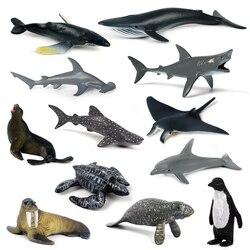 12 шт., миниатюрные морские животные, гигантские зубы, Акула, убийца, киты, синий кит, Акула, пингвин, дельфин, модель игрушки