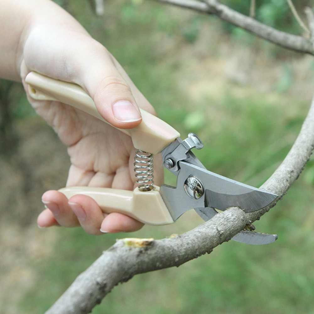 Taman Stainless Steel Gunting Grafting Alat Buah Pohon Pemangkasan Gunting Bonsai Pruners Taman Gunting Berkebun Secateurs Scissor