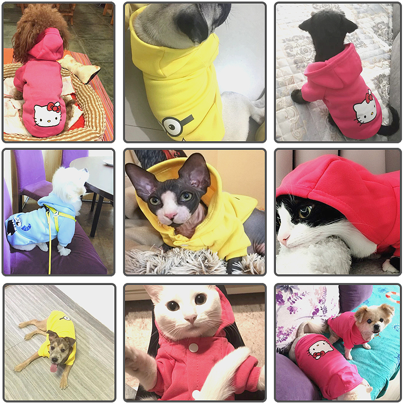 Cartoon Printed Dog Jacket with Soft Cotton Hoodie in Button Closure Design for Small/Medium Dogs 5