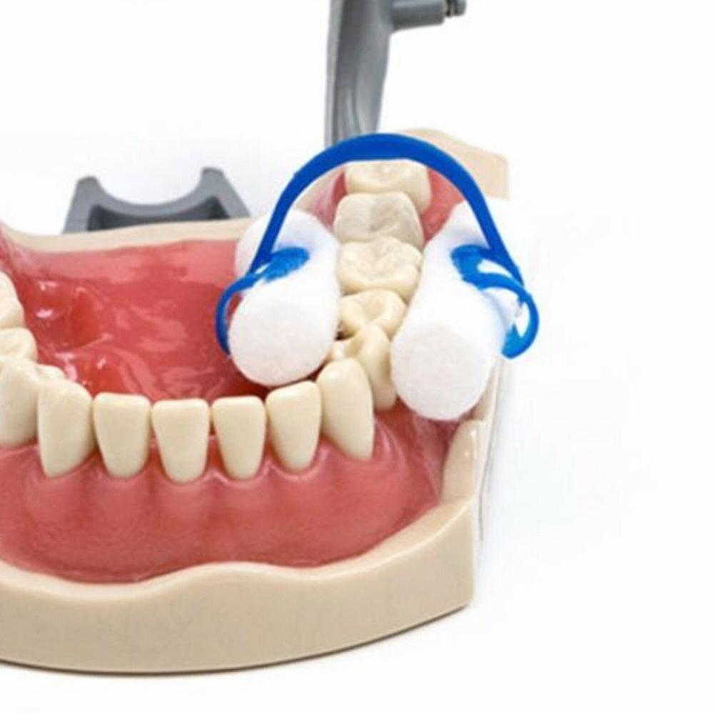 20pcs New Blue Disposable Cotton Roll Holder Clip Dental Dentist Holder Set For For Dental Clinic Lab Orthodontic Supplies