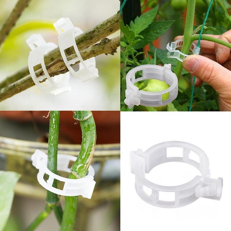 100PC Plastic Trellis Tomato Clips Supports Connects Plants Vines Trellis Twine Cages Greenhouse Veggie Garden Plant Clip