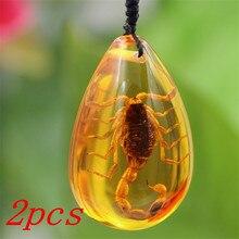 2 шт насекомое Камень Натуральный скорпионы включение Янтарный Прибалтики кулон ожерелье домашний декоративный камень