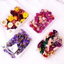 1 Box Reale Getrocknete Blume Trockenen Pflanzen Für Aromatherapie Kerze Epoxy Harz Anhänger Kerze, Die DIY Kerze Aromatherapie Zubehör