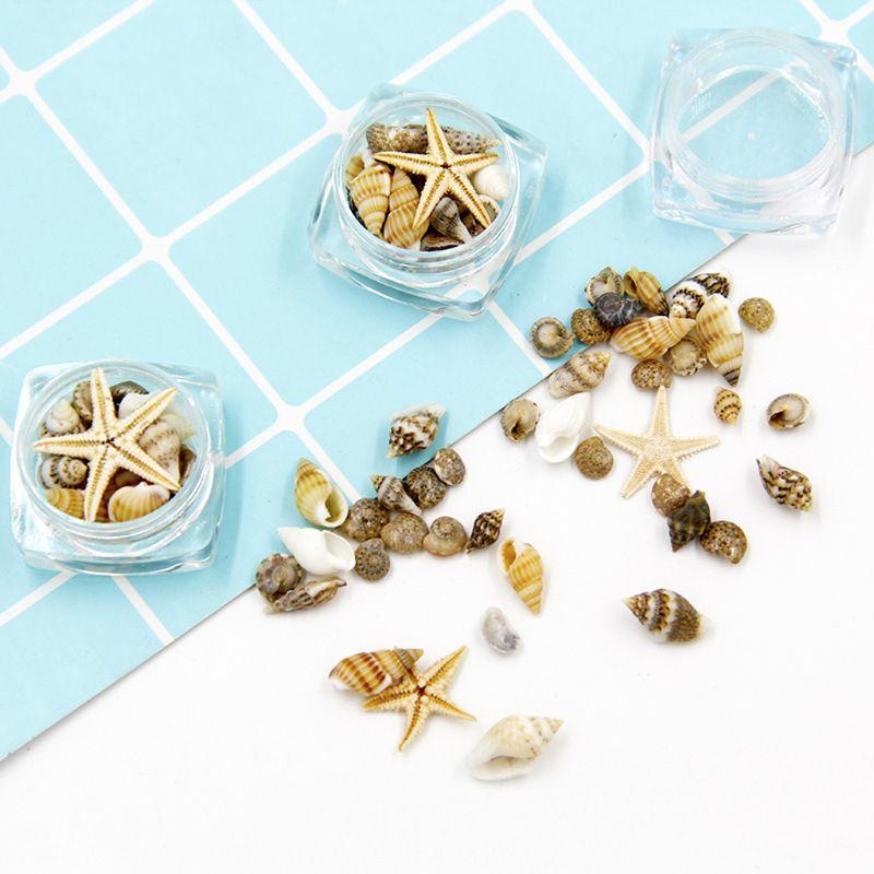 Small Natural Beach Seashell Starfish Nautical Decor Jewelry Glass DIY Fillers Nail Art Resin Fillings Jewelry Making