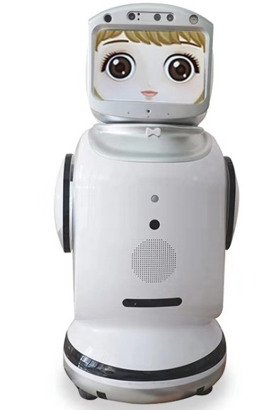 Smart robot can program dialogue voice video chat monitoring accompanying robot 3