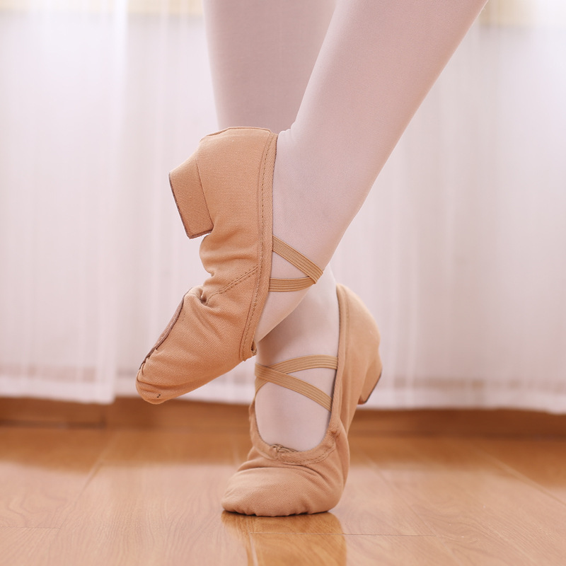 Dance Shoes Women's Adult Canvas Teachers Shoe Lace With Nation Belly Dance Shoes Foreign Trade Ballet Shoes Customizable Wholes