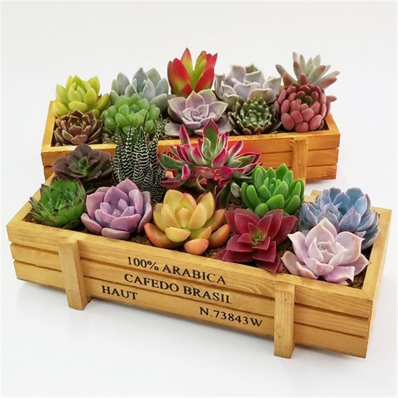 HOT SALE Wooden Flower Herb Planter Succulent Pot Rectangle Trough Box Plant Bed