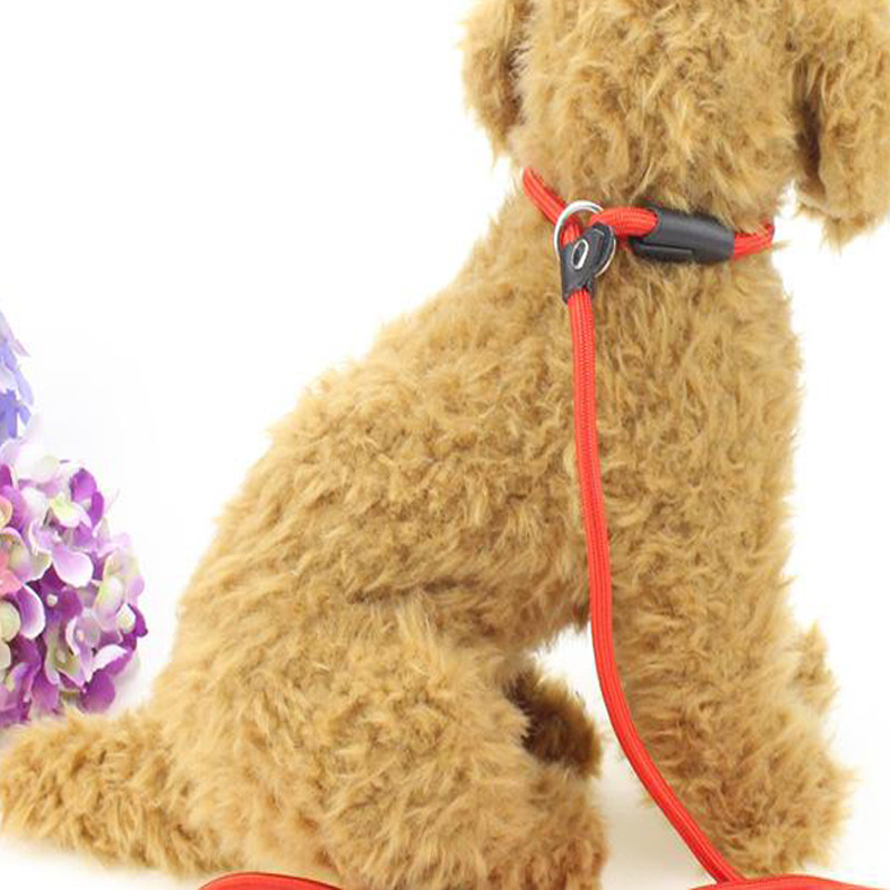 Dog Pendant Pet P Pendant Neck Ring Hand Holding Rope One-piece Pendant Dog Pendant Handle Teddy Small And Medium-sized Dogs Ret