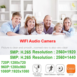 Image 5 - HD 5MP Wifi IP Kamera ONVIF 1080P Drahtlose Verdrahtete CCTV Kugel Kamera Außen Mic Audio TF Karte Slot P2P onvif JIENUO