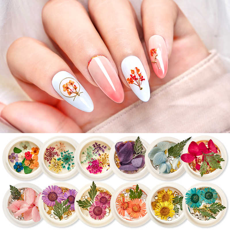 Mix Dried Flowers Leaf 3D Nail Art Decoration Natural Floral 3D Dry Beauty Nail Art Designs Polish Manicure Accessories