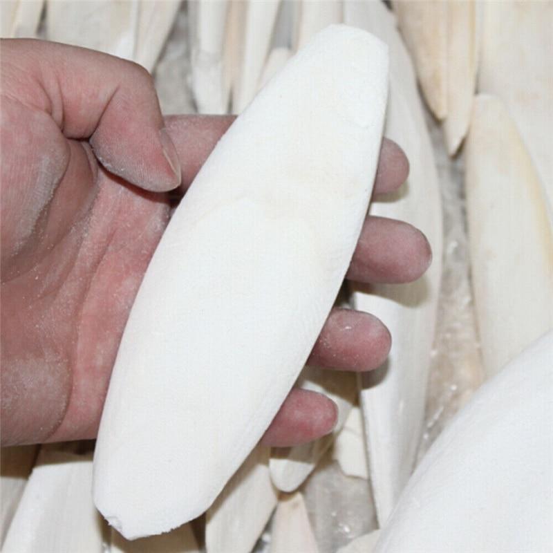 1PCS Cuttle Fish Cuttlefish Bone For Pet Budgie Birds Reptiles Tortoise Food