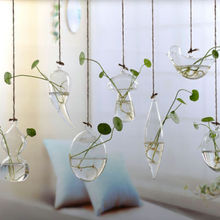 Vase-Glass-Planter Plant-Terrarium-Container Hanging Flower Wedding-Decor Garden Home