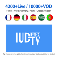 IPTV M3u Italia Spanish Greek Swedish IPTV IUDTV PRO 1 Year Europe IPTV Subscription Code for Android M3u MAG25X Enigma2 device