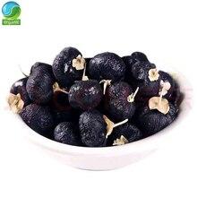 Lycium ruthenicum Murray Wild Black Wolfberry Black Goji Berry Dried Lycii Wolfberry Lycium Ruthenicum HeiGouQi