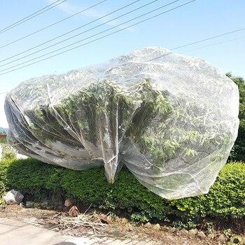 Red de malla de apertura de 1mm para vegetales y frutas, Red de polietileno para Control de plagas, red para jardín, granja, insectos, red de alta calidad