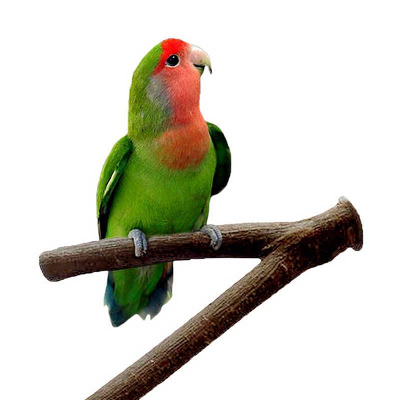 Vendita calda Pet Parrocchetto Budgie Appeso Gioca Giocattoli Pappagallo di Legno Supporto di Resk Posatoi Piattaforma Gabbia di Uccello Ramo di Legno Del Basamento Posatoi