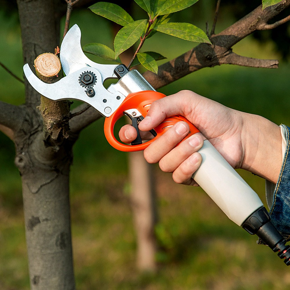 Tools : 36V 450W Electric Shear Cordless Garden Pruner 4400mah Lithium Battery Pruning Shear Orchard Scissors for Fruit Tree