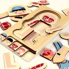Montessori Educational Boys Girls Body Structure Puzzle Children Wooden Toys Children Puzzles Kids Early Educational Toys chinese ring puzzle metal puzzles educational toys