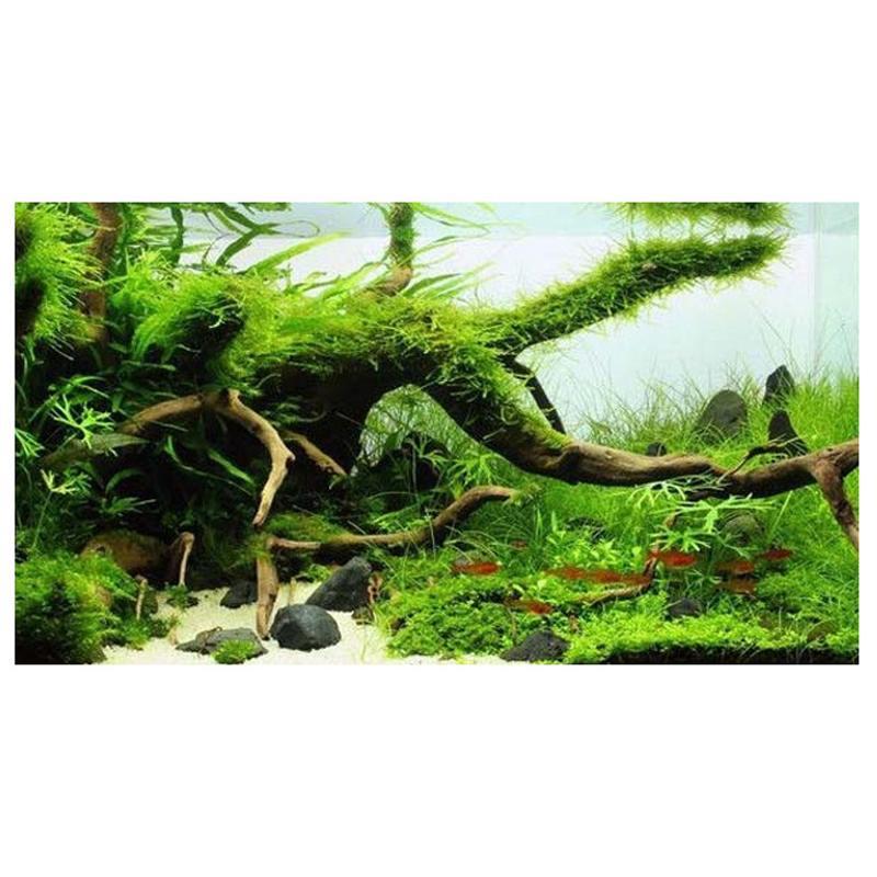 Mrosaa натуральный деревянный сундук Дрифтвуд дерево аквариум Растения ветка украшения орнамент Landscap Цветок Трава Декор