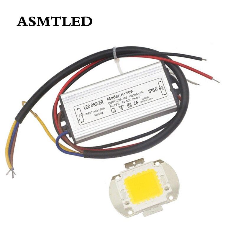 Reale Volle Watt 10W 20W 30W 50W 100W Weiß RGB High Power COB LED lampe chips Lampe + Led-treiber Für DIY Flutlicht Spot licht Rasen