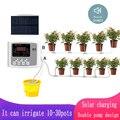 Садовый капельный телефон, контроллер двойного насоса, система таймера, интеллектуальная фотосистема на солнечной энергии для растений
