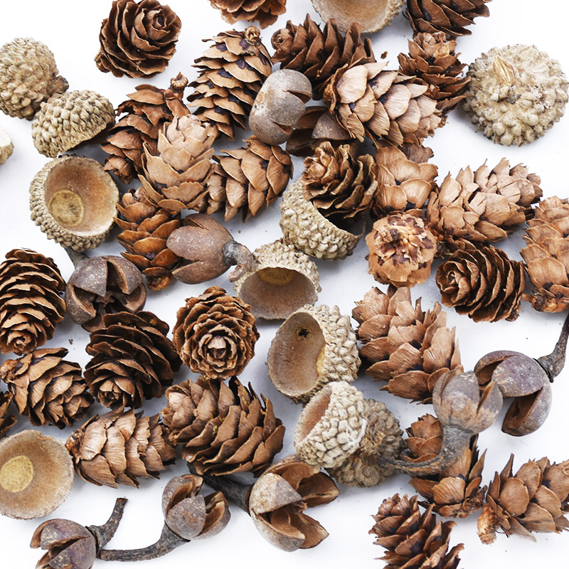 50PCS MINI Lovely Natural dried flower Pinecone series christmas decorations for home diy gifts box artificial plants wholesale|Artificial Plants|   - AliExpress