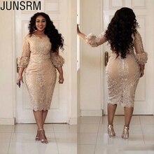 Elegant Short Lace Plus Size Mother of the Bride Dr