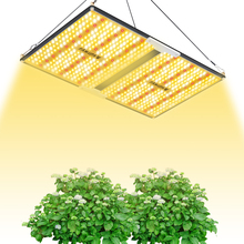 Famurs LED 성장 빛 전체 스펙트럼 양자 보드 실내 식물에 대 한 1000W/2000W/3000W 식물 빛 램프 온실 성장 텐트